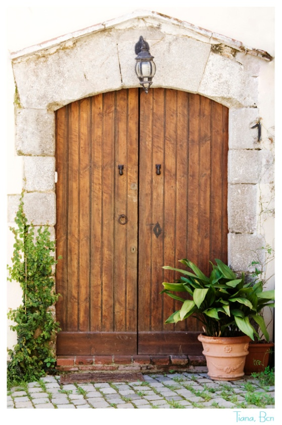 Puerta Tiana